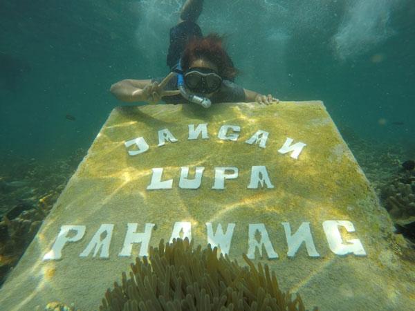 Open Trip Pulau Pahawang 1 Hari