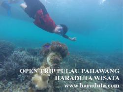 OPEN TRIP PULAU PAHAWANG 11 - 13 MARET 2016