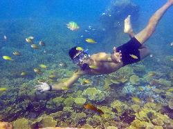 Paket Wisata Pulau Pramuka 2 Hari 1 Malam dari Kaliadem - Muara Angke